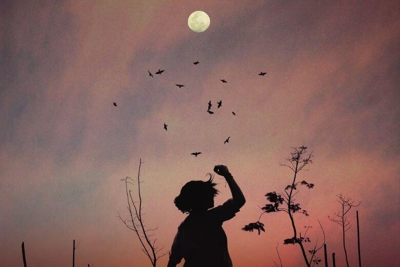 volle maan januari